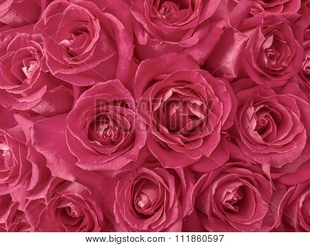 Marsala Toned Roses Bouquet