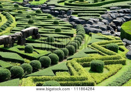 Garden path with topiary landscape