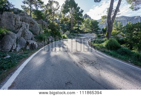 Mountain road with curves