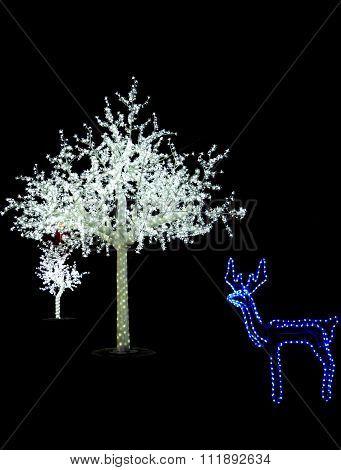 Christmas Scene With Illuminated Tree Outdoor