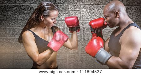 Athletes with fighting stance against grey brick wall