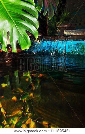 Decorative Pond
