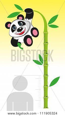 Ruler for measuring