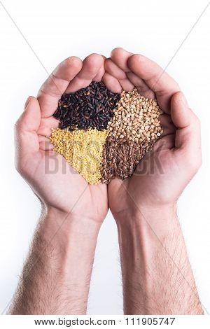 Gluten Free Seeds