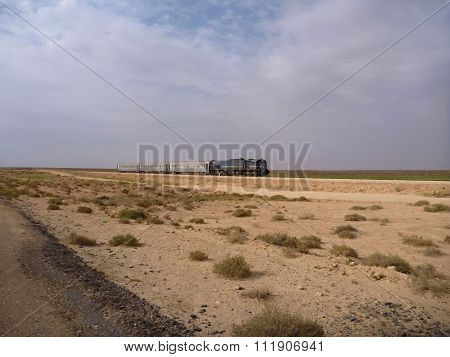 Train Passing The Desert With Small Bushes