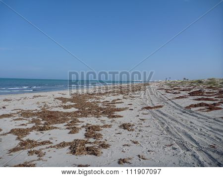 Deserted Beach At Djerba