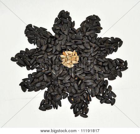 Sunflower sunflower seeds fried