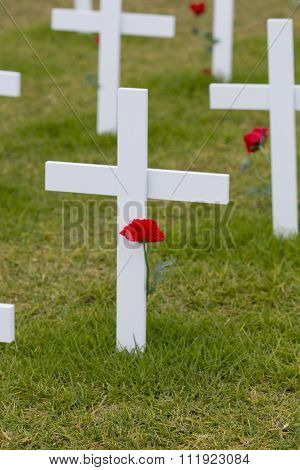 ANZAC Rememberance Crosses with Poppy
