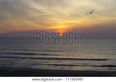 Ocean City Sunrise