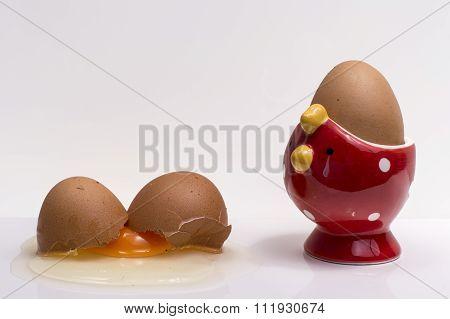 Crashed Egg