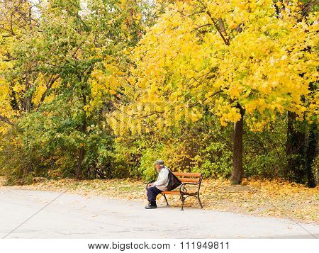 Varna, Bulgaria - November 10: An Authentic Landscape Of An Elderly Man Resting On A Bench In A City