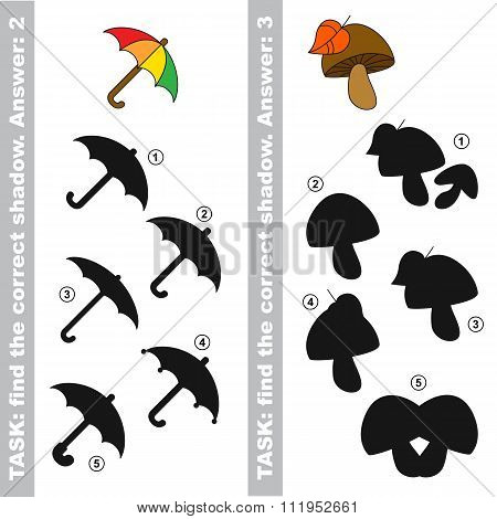 Mushroom and Umbrella. Find true correct shadow.