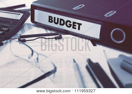 Office folder with inscription Budget.