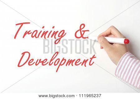 Business woman writing training and development word on whiteboard
