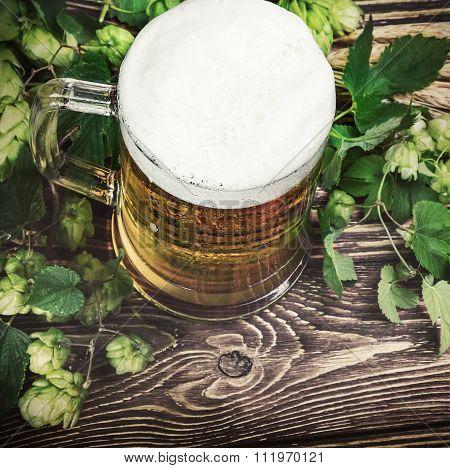 Mug With Beer With Hop