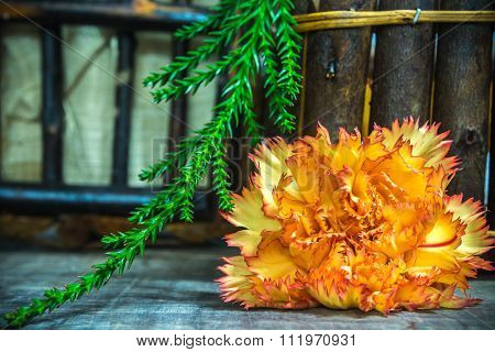 Yellow - Red Shade Carnation With Spiny Leaf On Wooden Basket