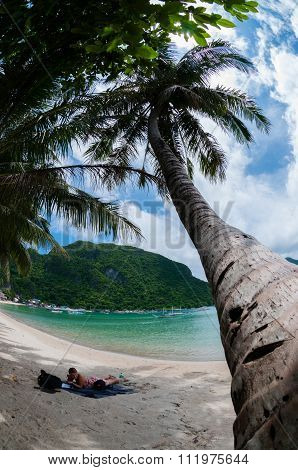 Palm tree in front of a Woman Resting on The White Sand beach