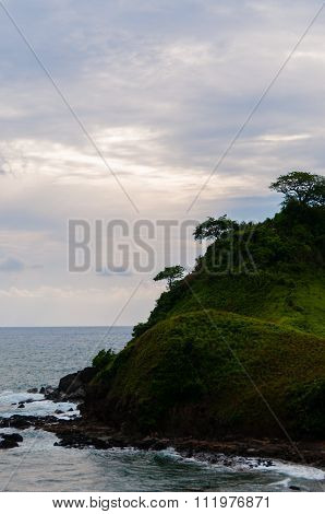 Small Green Island with steep decline and tree at the Sea