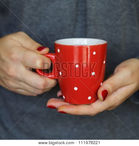 Woman Hands Holding A Cozy Red Mug