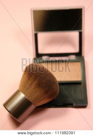 Brush And Blush Makeup