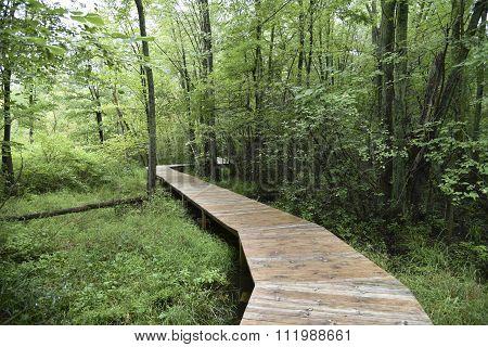 Heckrodt Wetland Reserve