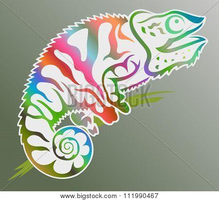 coloured chameleon vector art illustration