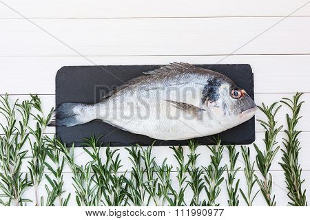 Fresh Raw Dorado Fish With Rosemary On White Wooden Table. Top View