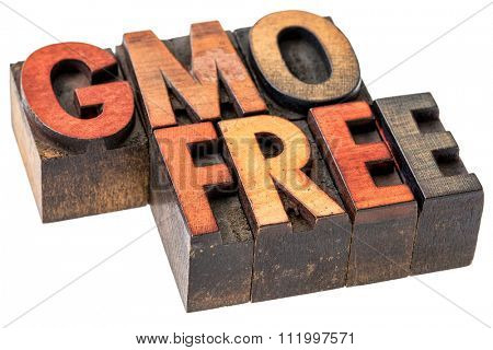GMO (genetically modified organism) free banner - isolated text in vintage letterpress wood type stained by inks