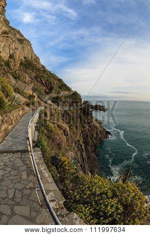 Via Dell Amor Of Cinque Terre, Italy