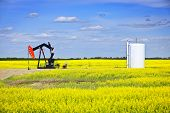 stock photo of oil well  - Oil pumpjack or nodding horse pumping unit in Saskatchewan prairies Canada - JPG