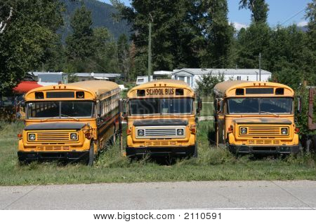 Old School Buses