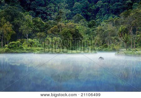 Hidden Tropical Paradise