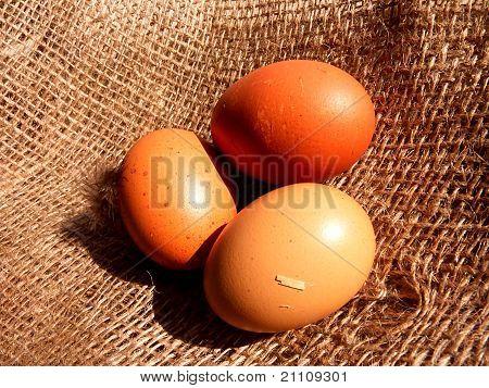 three organic eggs