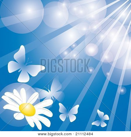 Summer Background With Butterflies And Flower