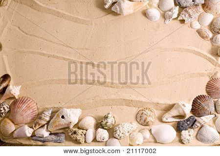 Seashell Beach Frame