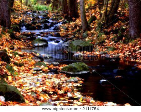 Autumny