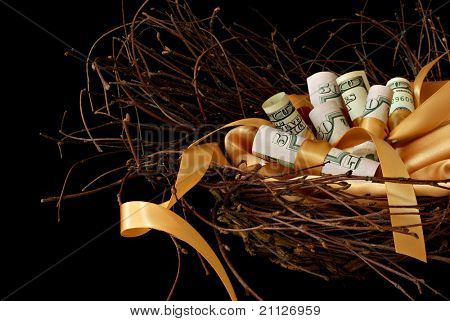 Financial nest egg concept with five hundred dollars on gold satin lining in nest of twigs on black background.  Macro with shallow dof.