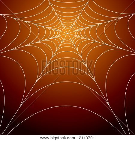 Spooky Spiders Web