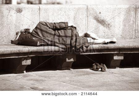 Sleeping The Tramp