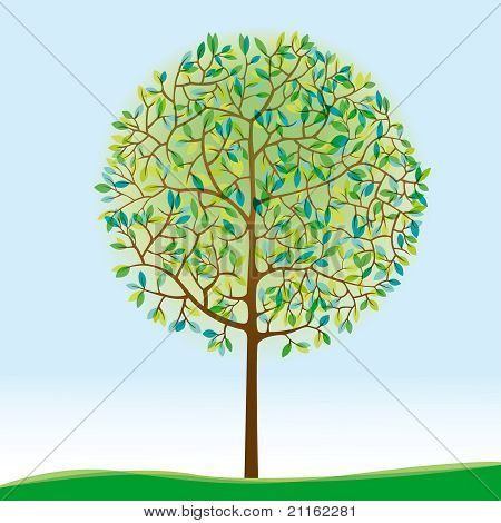 Green Tree On Meadow
