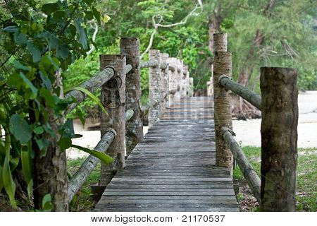 Wooden bridge in  malaysia jungle. Landscape.