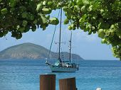 Sailboat in Magen's Bay St. Thomas Caribbean