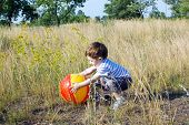 foto of tall grass  - A child playing with a ball on a summer day in the tall grass - JPG