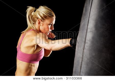 Punching Bag Punch