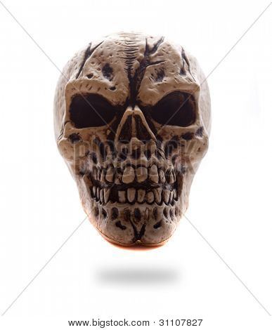 Frontal view of a copy of a human skull with dark eye sockets on white, backlit studio image for horror and halloween concepts