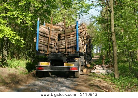 Lumber Transport