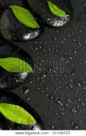 Green leaves with zen stone on wet background