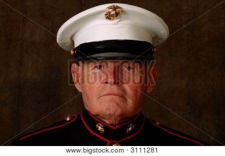 Marine Veteran Closeup
