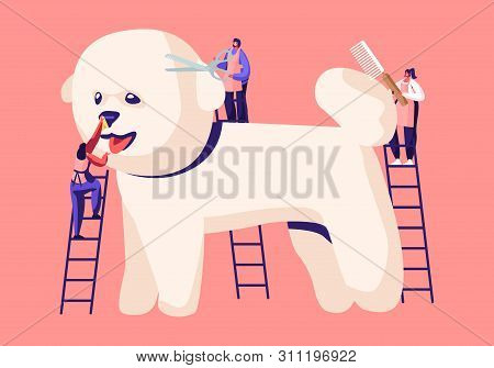 poster of Tiny Characters On Ladders Care Of Cute Poodle Puppy At Groomer Salon, Cut Wool, Brushing With Comb,