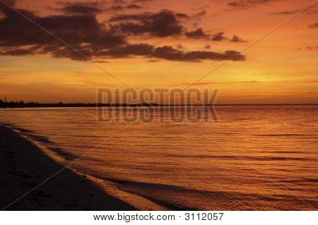 Molten Tropical Sunset